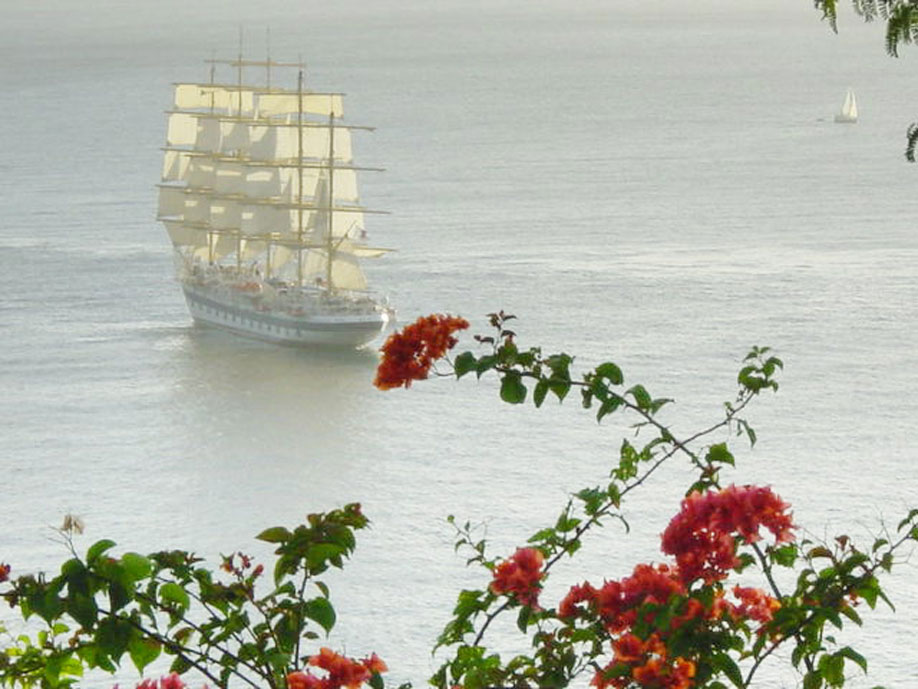 Full-Masted Sailing Ships and Cruise Ships are Frequently Seen from our Terrace